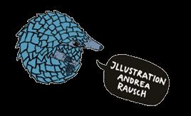 Illustration Andrea Rausch